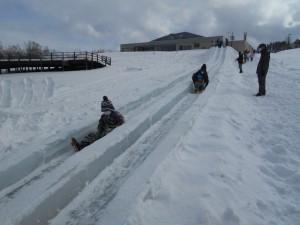 今年はいつもより滑り台の長さは短めでしたが、2ラインコースでした(゚∀゚)